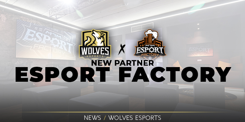 New Partner: Esport Factory
